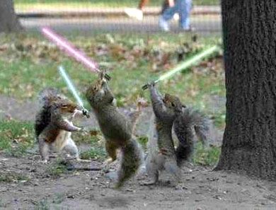 jedis having fun